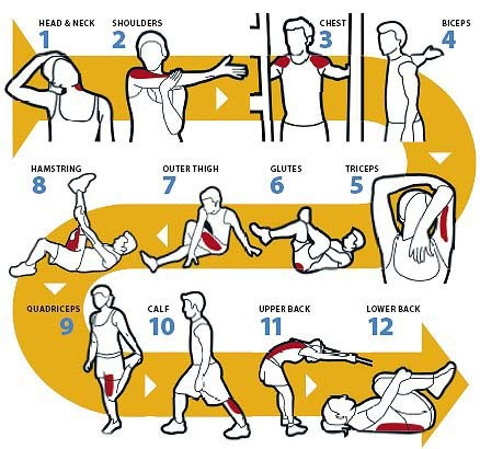 healthy-as-fuckk:  ambitiouslyfit:  Don't forget to stretch~  THIS^^ This is something that should be on every fitblr's blog