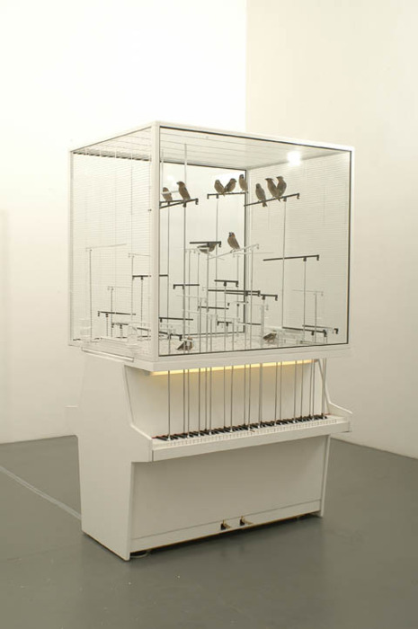 Bird cage with real birds and two real vertical pianos. When the birds jump on the aluminium straw they play piano notes. By Robert Gligorov