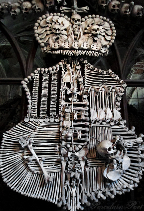 Photographed by me inside the Sedlec Ossuary outside of Prague, Czech Republic.  The well-known story of the Bone Church ('Ossuary' to be more correct or 'Kostnice' in Czech) in Kutná Hora is that, in the 13th century, Jindřich, the abbot of Sedlec monastery, returned from a visit to Palestine with a pocketful of soil and sprinkled it on the cemetery surrounding the Chapel of All Saints. This direct association with the holy land led to the graveyard becoming a sought after burial site among the aristocracy of Central Europe. At the time of the thirty years' war in the 17th century, the number of burials outgrew the space available, the older remains began to be exhumed and stored in the chapel, and it's estimated that the chapel now contains the bones of up to 40,000 people.  http://www.outsideprague.com