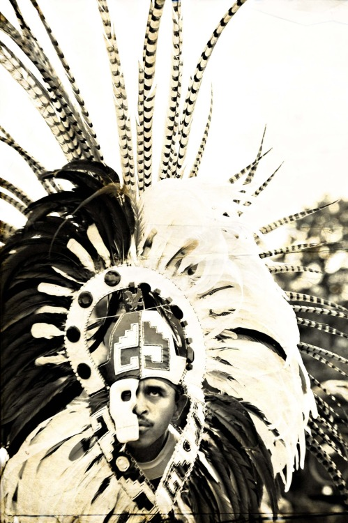 native american head-dress