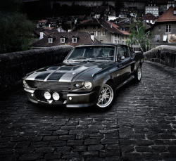 headproduct:  shelby GT500