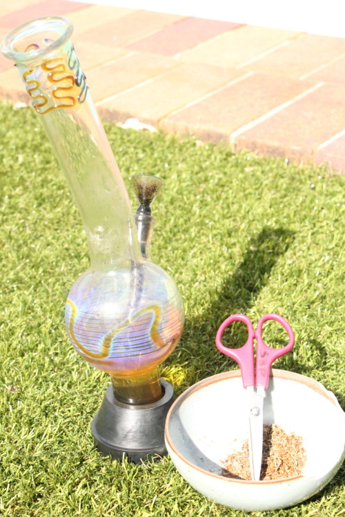 d3d-b3t:  REBLOG MY BONG IT'S SEXY!