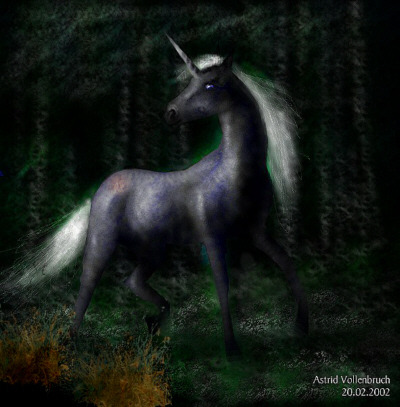 """Black Unicorn"" by Astrid Vollenbruch"