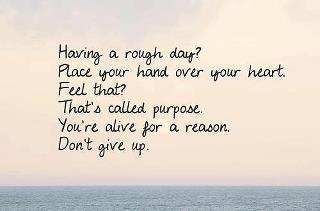 Everyone Has A Purpose In Life!! :-)  Keep fighting fellow Penguins; Bipolar Penguin -X