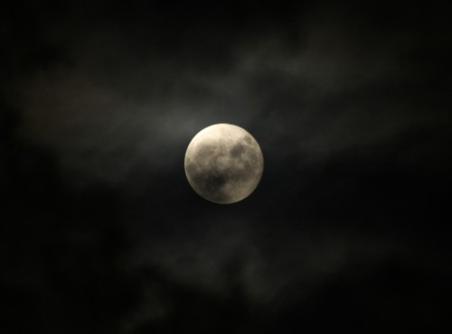 Last nights moon may have been the inspiration for werewolf infested dreams… photo: JuneMoon - pocketmerlin