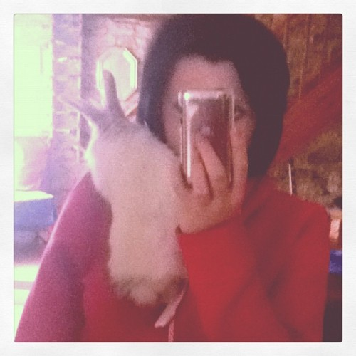 I have a rabbit on my shoulder (Taken with instagram)