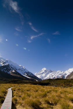 The magnificent Mt Cook in the background at 3754 metres (12316 ft).