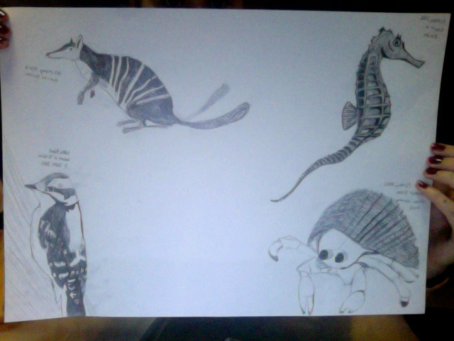 I drew these! There is going to be one more in the middle, unsure what its going to be yet! But do you guys like them? :)