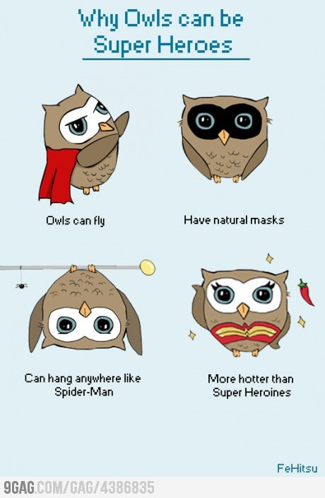 9gag:  Why owls can be super heroes