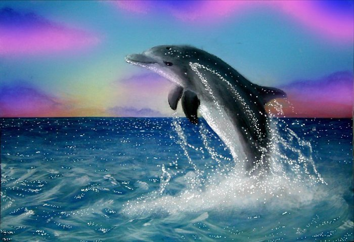 ☼☺ SMILE UPON YOUR FACE FOR THE ENTIRE SONG. AND THE DOLPHINS LAUGH WITH YOU. CHECK IT OUT! FR33 DOWNLOAD! ➮➫➬➭ WHITELY! ☺☼