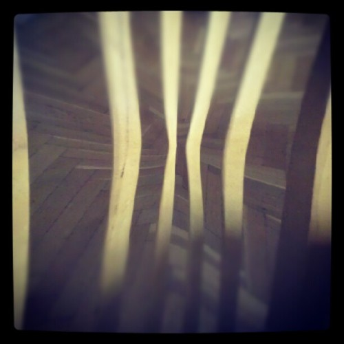 Wood on woods (Taken with instagram)