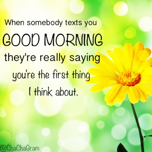 Wake up knowing somebody else is thinking about you. #GoodMorning #Love #quote #quotes #lovequote #inspirational #chacha #clubsocial #flowers #dailyedit #picoftheday #chacha #iphoneography #picframe #beautiful #fact #text (Taken with instagram)