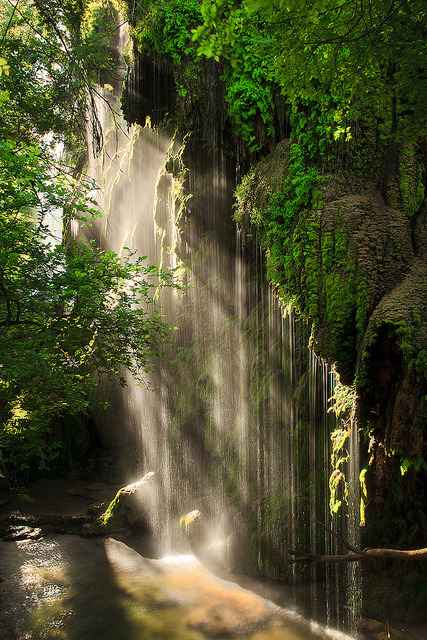 visitheworld:  Morning light at Gorman Falls, Texas, USA (by Jeff Lynch).