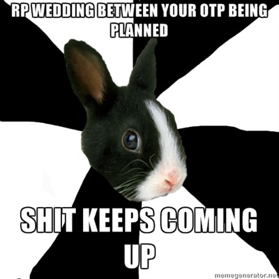 fyeahroleplayingrabbit:  I don't blame my partner, I know things happen. I just find it funny that our characters have been so stoked about this wedding and then we have to keep putting it off.