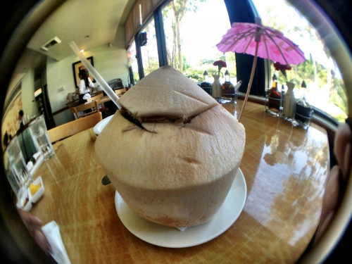 The real coconut water/juice