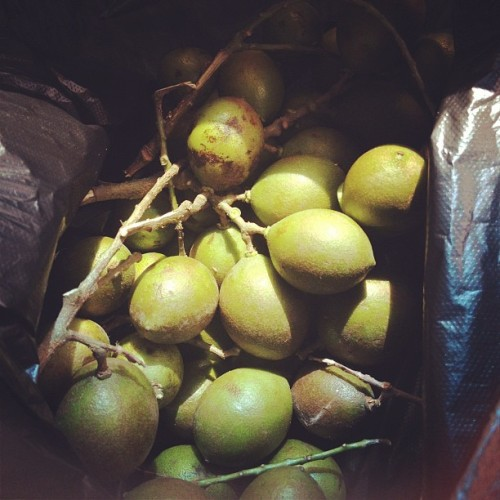 Quenepas! 😍😍😍😍 (Taken with instagram)