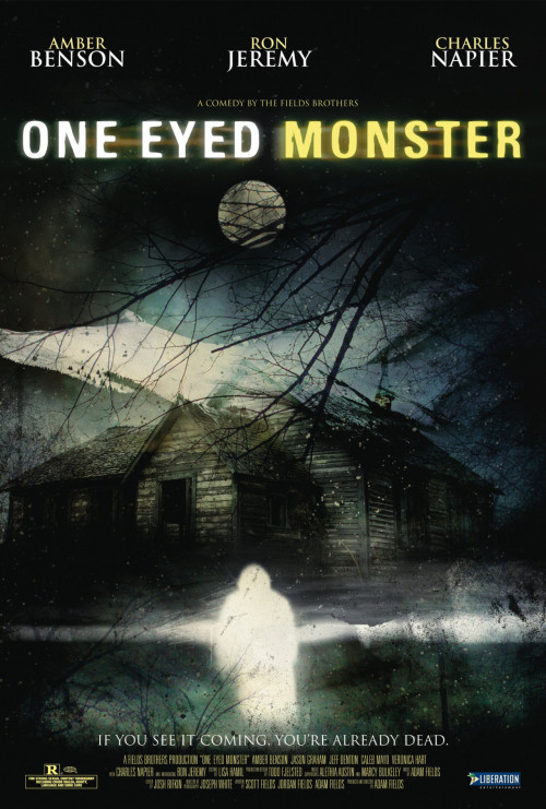 'One-Eyed Monster' (2008) A porn crew, stranded in a snowstorm, is slaughtered by the disembodied privates of adult film star Ron Jeremy. (sighs) Yes, really.  The most RIDICULOUS horror movies ever made