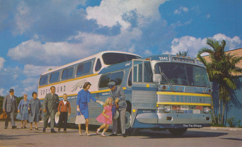 America's Favorite Bus: The Super Scenicruiser Greyhound presents the Super Scenicruiser-62 ways better-than-ever. This 43-passenger, gold-striped bus features air conditioning, panoramic windows, a complete restroom and air suspension ride. It's such a pleasure to ride this bus…and leave the driving to us.