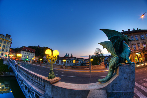 kingdomofyugoslavia:  The Dragon Bridge, Slovenia