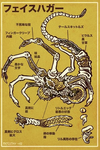 aliensandpredators:  Facehugger Anatomy by Brad McGinty Get the complete set of xenomorph, predator, and facehugger anatomical guides for $50!  I just did, and soon they will be gracing the walls of my nerd-cave.  Brad McGinty on tumblr   FUCK