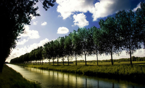Dutch Scenery by ♥siebe © on Flickr.