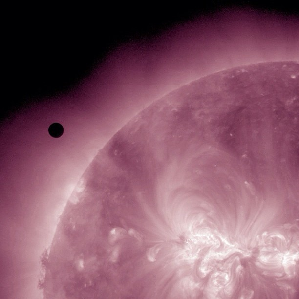camillasdo:  Here is Venus approaching the Sun as seen through NASA's Solar Dynamics Observatory #NASA #SDO #VenusTransit (Taken with instagram)