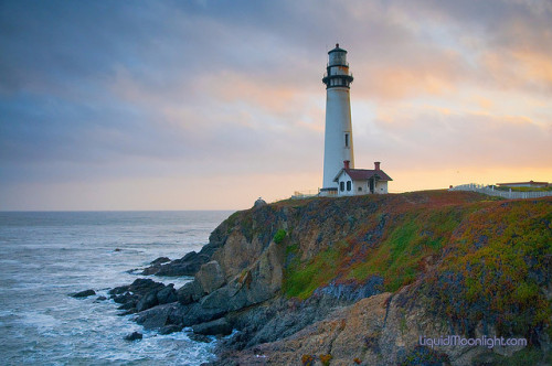 california-adventure:  Pigeon Point Sunset - California Coast by Darvin Atkeson on Flickr.