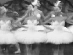 SUBMISSION: Swan Lake at the Mariinsky Theater in St. Petersburg, Russia: Photo by Adeo Alday