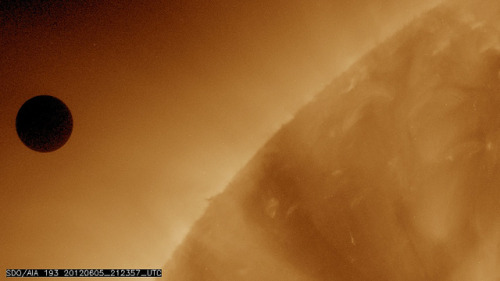 breakingnews:  NASA captures Venus transit approach  NASA's Solar Dynamics Observatory is collecting images of the transit of Venus across the face of the sun. This image was captured at about 5:24 p.m. ET. The last transit was in 2004 and the next won't happen until 2117. More: photos, live coverage Photo credit: NASA/SDO, AIA