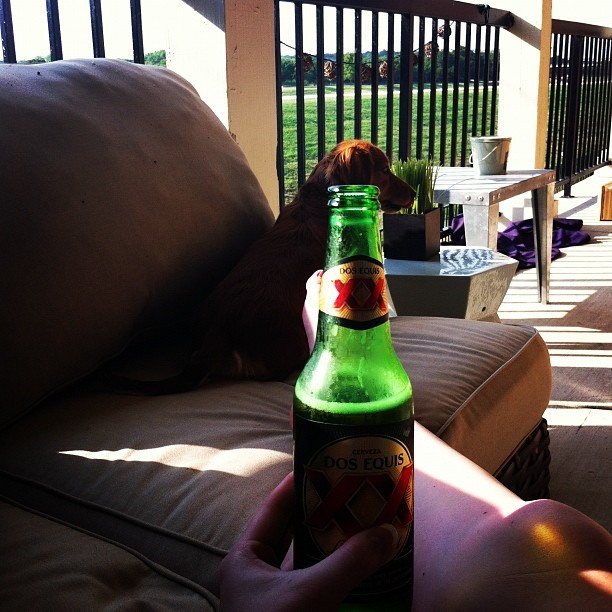 Perfect way to end the day. Dos Equis. (Taken with instagram)