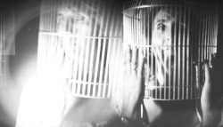 Caged on Flickr.Caged by me! :)