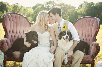 theweddingtree:  This will be me. Covered in dogs.