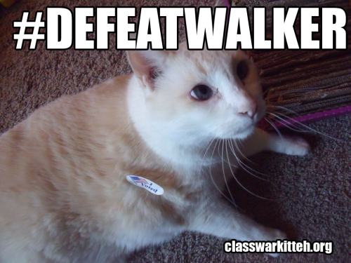 Did you vote and have a kitteh who wants to speak out against Walker in teh class war? Submit it!