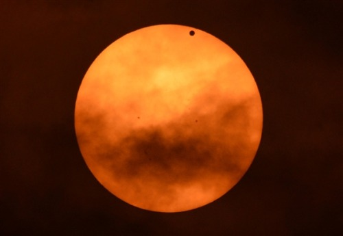 inothernews:  VENUS IF YOU WILL   The planet Venus is seen during its transit across the Sun from Riverside Park on Manhattan's West Side.  (Photo: Stan Honda / AFP-Getty via MSNBC)