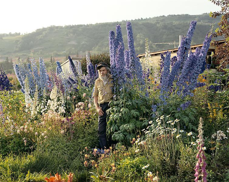 Joel Sternfeld / A Blind Man in His Garden, Homer, Alaska / 1984