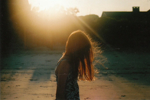palides:  untitled by mary_robinson on Flickr.