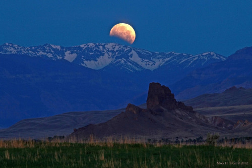 n-a-s-a:  [Monday's] Eclipsed Moon Over Wyoming Credit & Copyright: Mack H. Frost