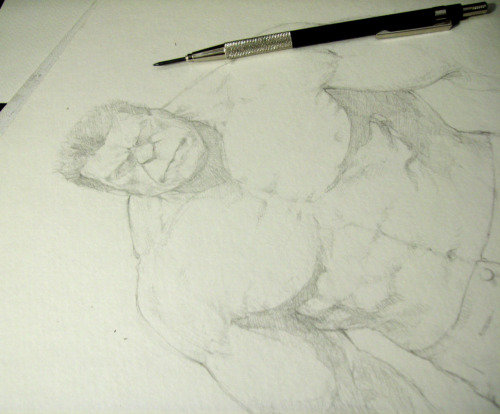 "I think I discovered a love for drawing muscly men. Omg. I don't know. Anyway, Hulk WIP a.k.a. my distraction from ""Juuicy"" Reese ~_~ Prolly messed up somewhere in the anatomy,; Im doing this one freehand."