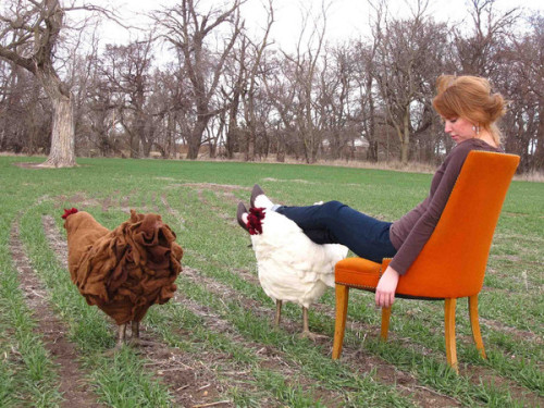 Chicken footstool - Thecitygirlfarm via Think.Bigchief