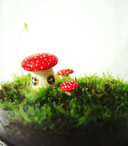 toadstool houses