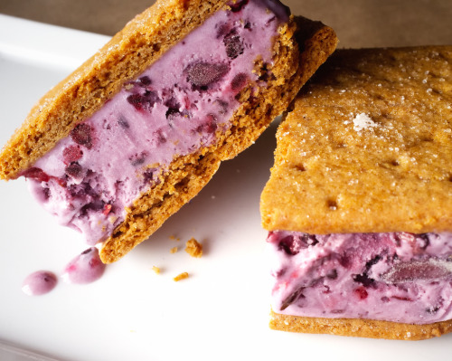 unbelievablysweet:  Blackberry Ice Cream Sandwiches [Explore] (by ralph and jenny)