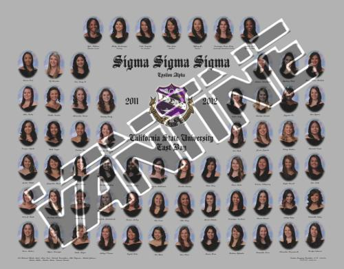 rockymoomoo:  These are my beautiful Sorority sisters. <3 Sigma Sigma SigmaFaithful Unto Death. (I'm the 4th to last by the way)