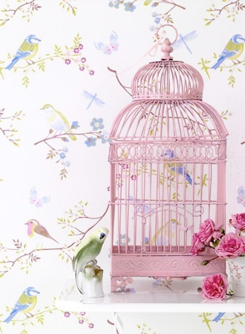 reinedeboheme:  The prettiest cages can't mask the prisons within.