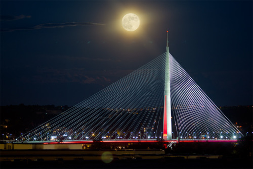 Ada Bridge, Belgrad, Serbia