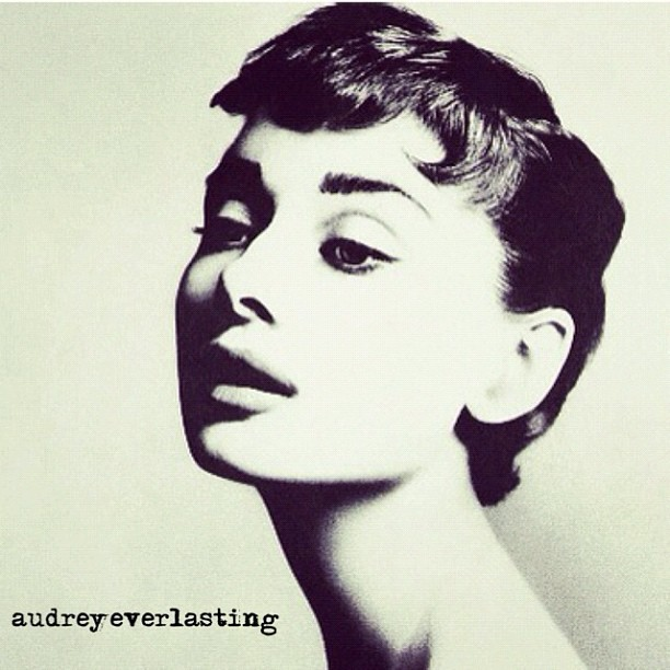 Timeless  #tumblr #cute #audreyhepburn #audrey #fashion #vintage #beautiful #love #beauty #model #follow #popular #audreyeverlasting #instagood #popular #share #shoutout (Taken with instagram)