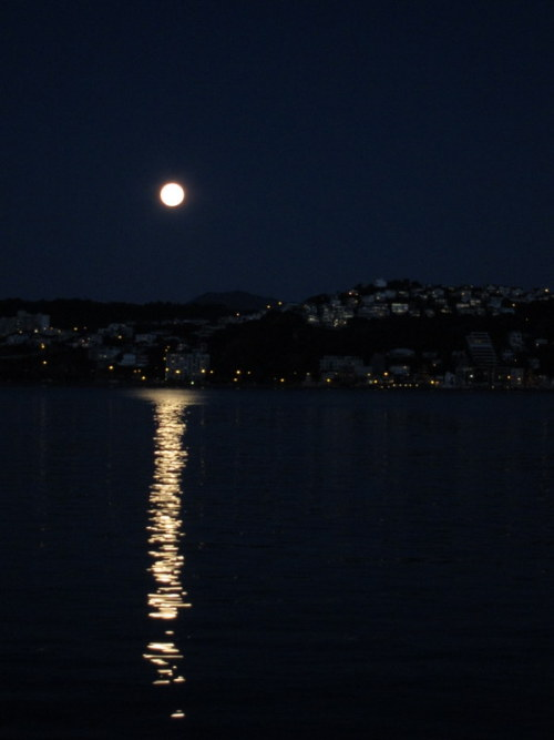 Supermoon, Wellington Harbour