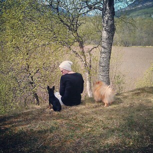 #summer   #sun   #girlfriend   #love   #chihuahua   #pomeranian   #dog   #dogs   #beautiful   #view   #green   #mountain   #tree   #morning   #goodmorning