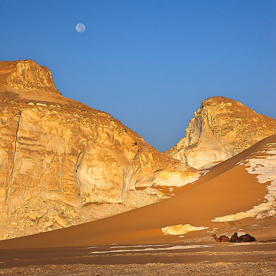 travelingcolors:  Trip in white desert | Egypt (by daviDRombaut)