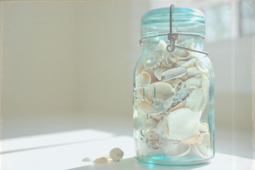 I would love to make one of these with all the seashells I have collected my traveling.