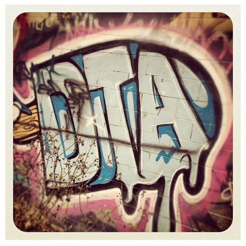 dtaposse:  SPRAYING (Taken with instagram)